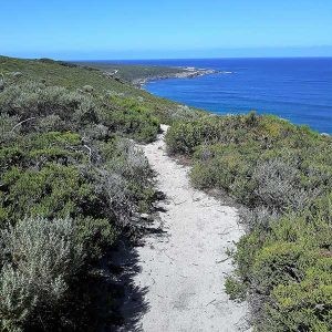 Margaret River Walks
