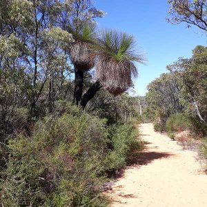 Margaret River Forest and Coastal Walks - 3 Day Walk