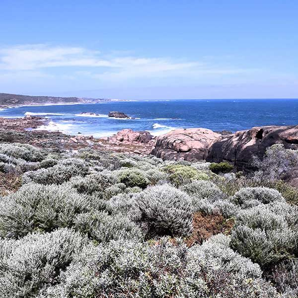 Margaret River Forest and Coast Walks 1