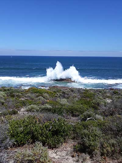 Margaret River Forest and Coast Walks